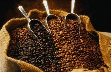 Buy arabica coffee beans wholesale
